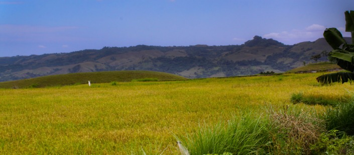 featured images-sumba-1
