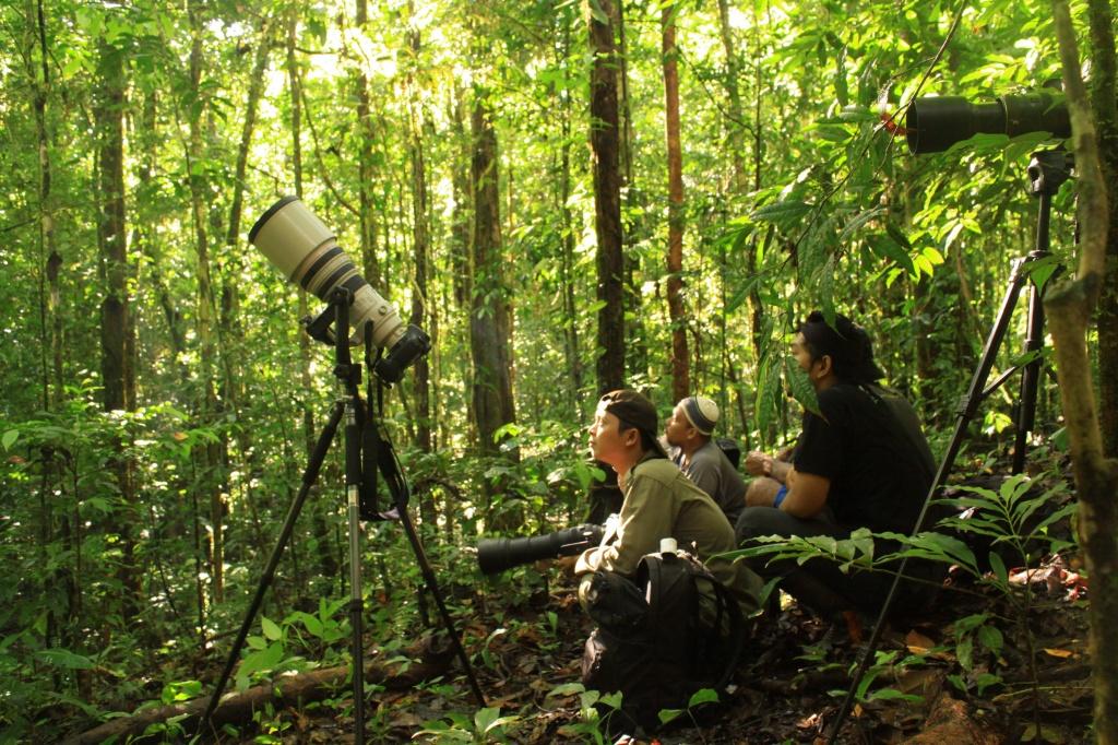 Seram adalah hutan rapat, gelap dan bikin leher tengengen.