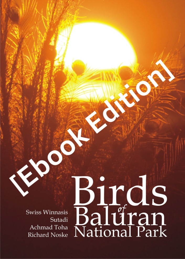 cover BBB_resize-ebook